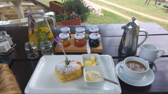 Boston, África do Sul: My scone with a selection of 6 interesting jams.