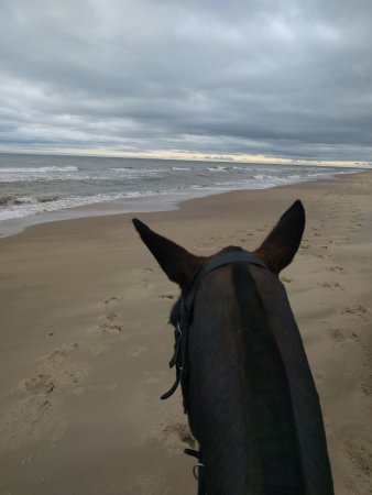 Glenealy, Irlandia: Ride on the beach