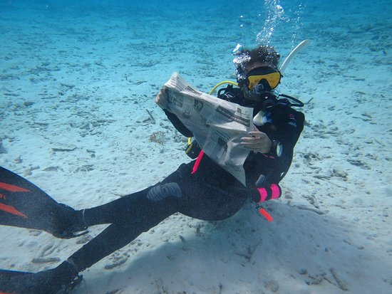 Dive Friends Bonaire: Daughter enjoyed cleaning up the reef