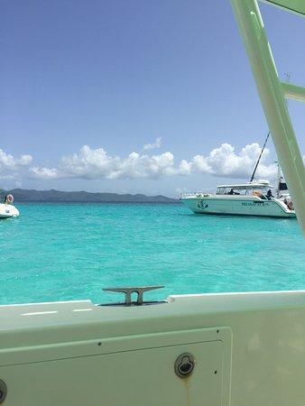 Cruz Bay Watersports Photo