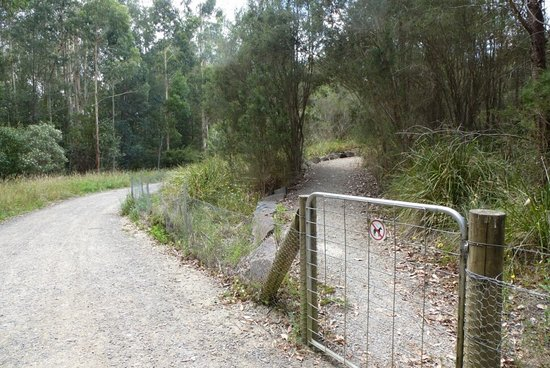 Belgrave, Avustralya: Birdsland Reserve