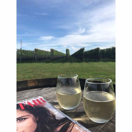 Mattituck, Estado de Nueva York: Very nice sparkling wine, from the outdoor seating area