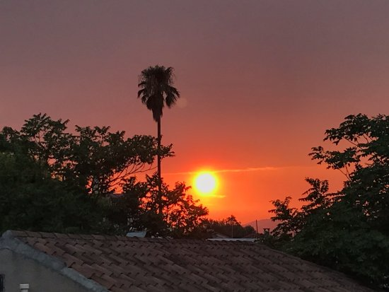 Elaia Restaurant : sunset