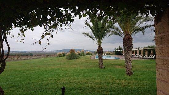 Vilafranca de Bonany, Spain: DSC_9121_large.jpg