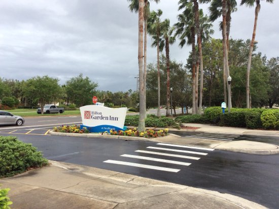 Picture Of Hilton Garden Inn Orlando At Seaworld Orlando Tripadvisor