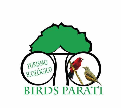 Birds Parati Paraty Brasil Review Tripadvisor