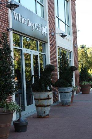 Wayne, Πενσυλβάνια: Dog themed upscale restaurant!