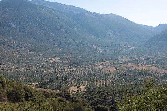Hosios Loukas Monastery: La vallée de la Phocide en contre bas du monastère