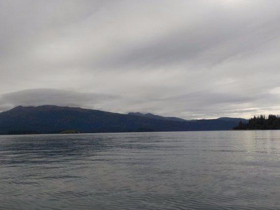 True North Kayak Adventures: Views from the kayak