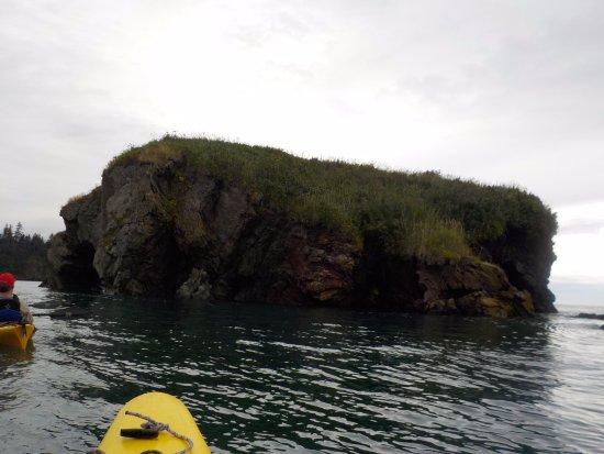 True North Kayak Adventures: elephant rock