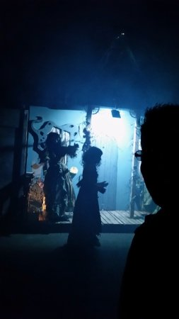 Silverwood Theme Park: Scarywood Creepers