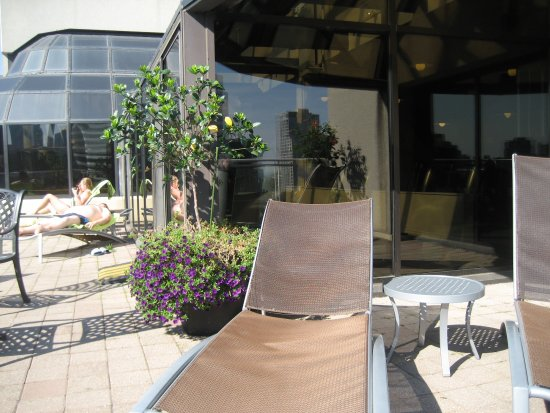 Chelsea Hotel, Toronto: Rooftop sun terrace, outside the gym and adult pool.