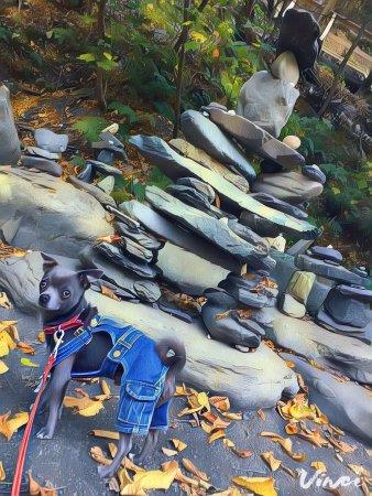 Parc de la Gorge de Coaticook: photo9.jpg