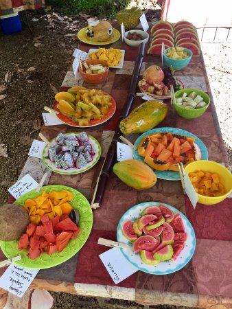 Kilauea, Гавайи: Exotic fruit on the tour