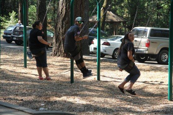 Dunsmuir Botanical Gardens, Swings !!!