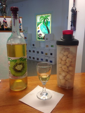 Panama City Beach Winery: King Kiwi wine tasting