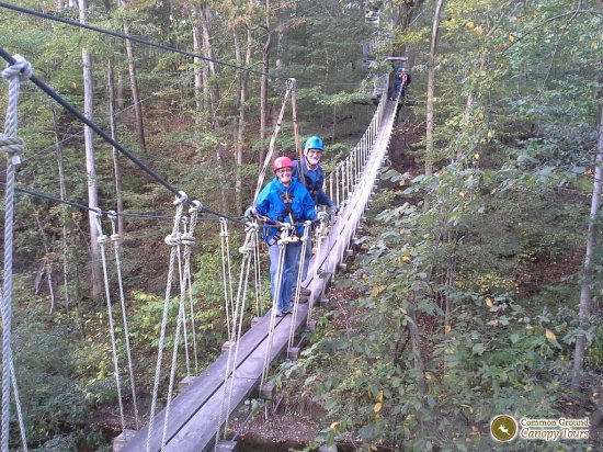 Oberlin, OH: One of the two swinging bridges