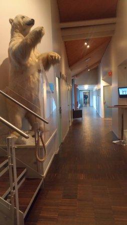 Radisson Blu Polar Hotel, Spitsbergen, Longyearbyen: Corridor leading to the rooms
