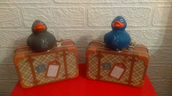 Stibb, UK: Collecting the Darwin Escapes Rubber Ducks!
