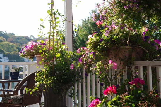 Harbour Towne Inn on the Waterfront: flowers along the lower porch
