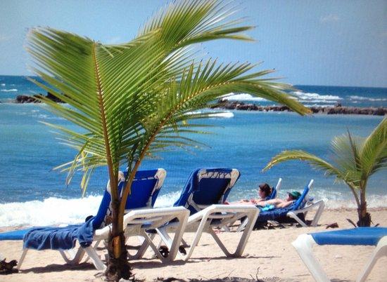 Barcelo Capella Beach Cottage Reviews Juan Dolio Dominican Republic Tripadvisor