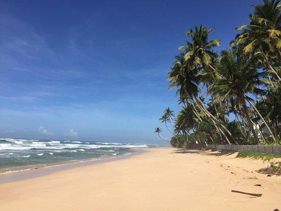 Habaraduwa, Sri Lanka: What an amazing place