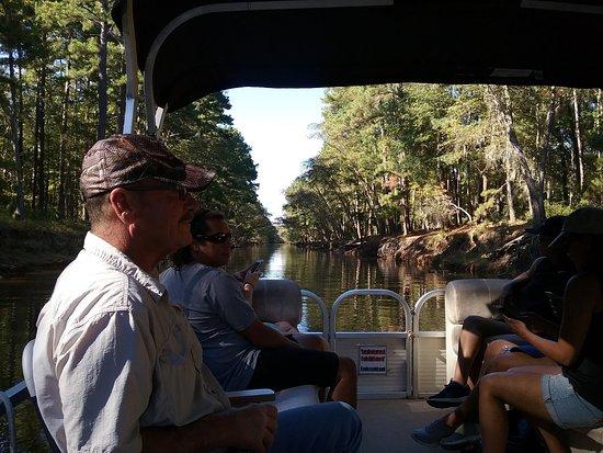 Captain Ron's Swamp Tours: Swamp Tour