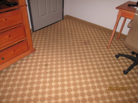Country Inn & Suites by Radisson, Beaufort West, SC : just some of the stains on the carpet