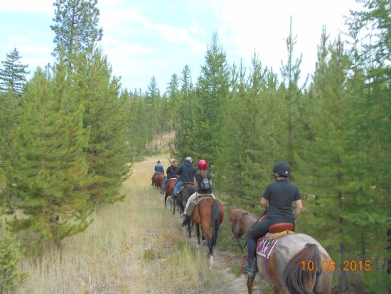 Marion, MT: Trail Rides