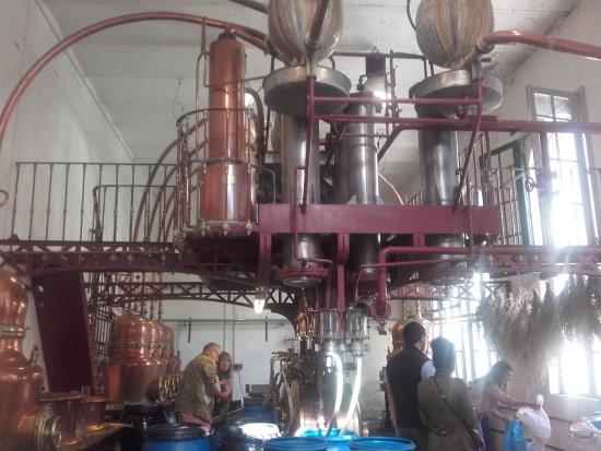 Distillerie Combier : 20171003_144649_large.jpg