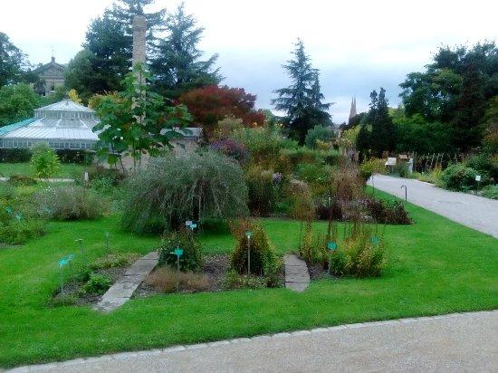 Jardin botanique de l 39 universit de strasbourg photo de - Jardin botanique de l universite de strasbourg ...
