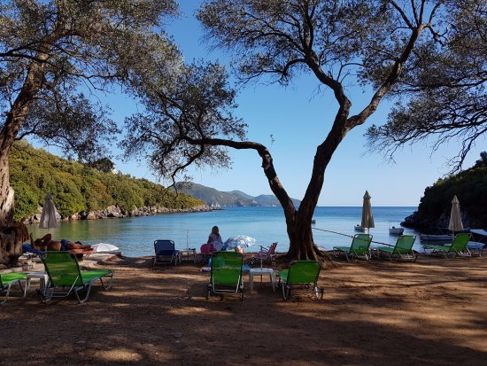 Zavia beach - Picture of Zavia Beach, Syvota - Tripadvisor