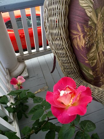 Saint Helens, OR: The front porch view, flowers and friends