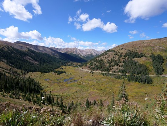On the way up to the Independence Pass