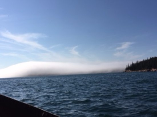 Bass Harbor, ME: Late September, Fog bank off the coast