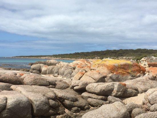 Port Lincoln, Avustralya: photo2.jpg
