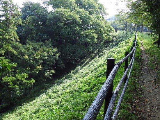 Kameyama, Japan: 一応こんな防御的な雰囲気の場所もありました