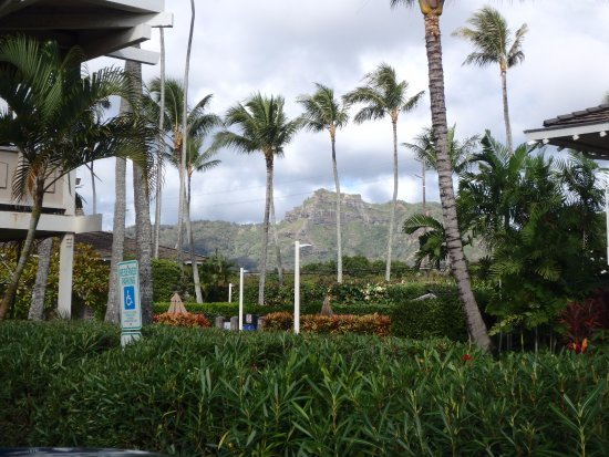 Plantation Hale Suites: View of sleeping giant mountain from hotel.