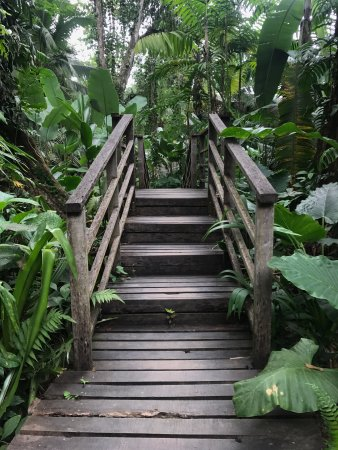 Cocles, Kosta Rika: photo9.jpg