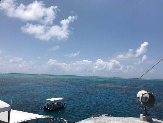 Amazing Trip Picture Of Quicksilver Cruises Port