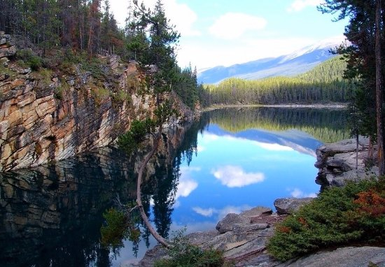 Horseshoe Lake: Jasper NP