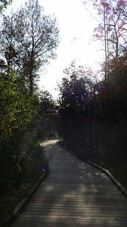 Orangeville照片