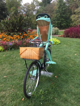 Mansfield, OH: even frogs ride bikes