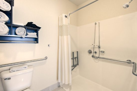 Hampton Inn & Suites Denver Tech Center : Bathroom