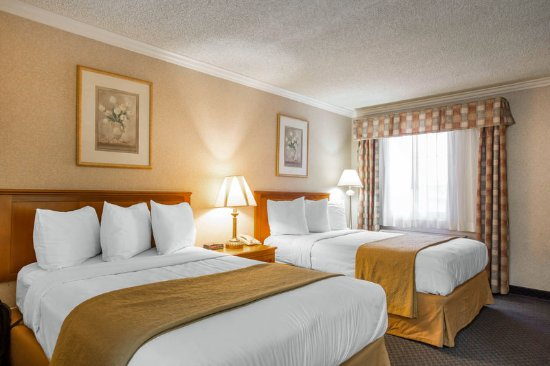 Quality Inn Near Hollywood Walk of Fame : Double guest room