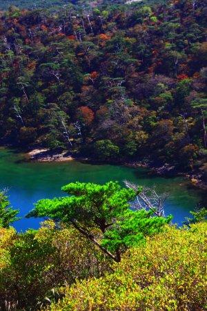 Ebino, ญี่ปุ่น: 白鳥山北展望台より・2(2016年10月撮影)