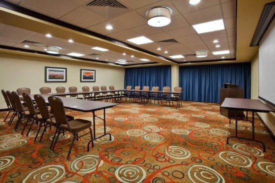 Cordele, Gürcistan: Holiday Inn Express Meeting Room