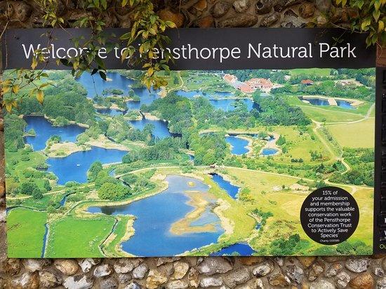 Pensthorpe Natural Park: Entrance