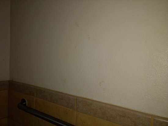 Oceanfront Lodge: Dirty Wall