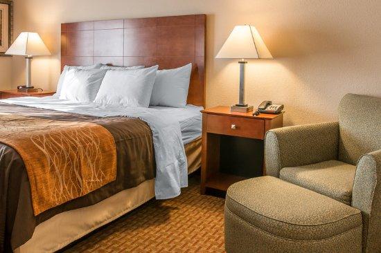 New Buffalo, MI: King room